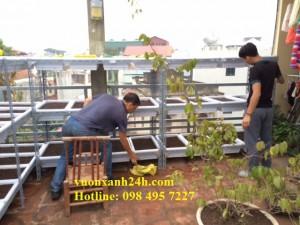 Vườn rau sạch sân thượng nhà anh Minh – Kim Giang