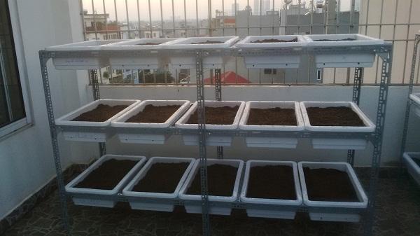 Giàn trồng rau sạch tại nhà: (3 tầng, 15 chậu, 4.5 m2)