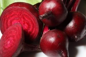 Hạt giống củ dền đỏ