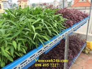 Giàn trồng rau sạch tại nhà 2 tầng, 28 chậu(68*43*16) màu xanh
