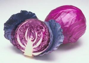Hạt giống cải bắp tím