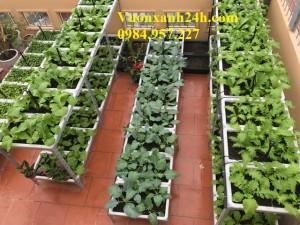 Giàn trồng rau sạch 2 tầng Xanh (18 chậu)