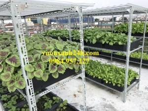 Giàn trồng rau  3 tầng, 27 chậu màu đen(48*34*16)