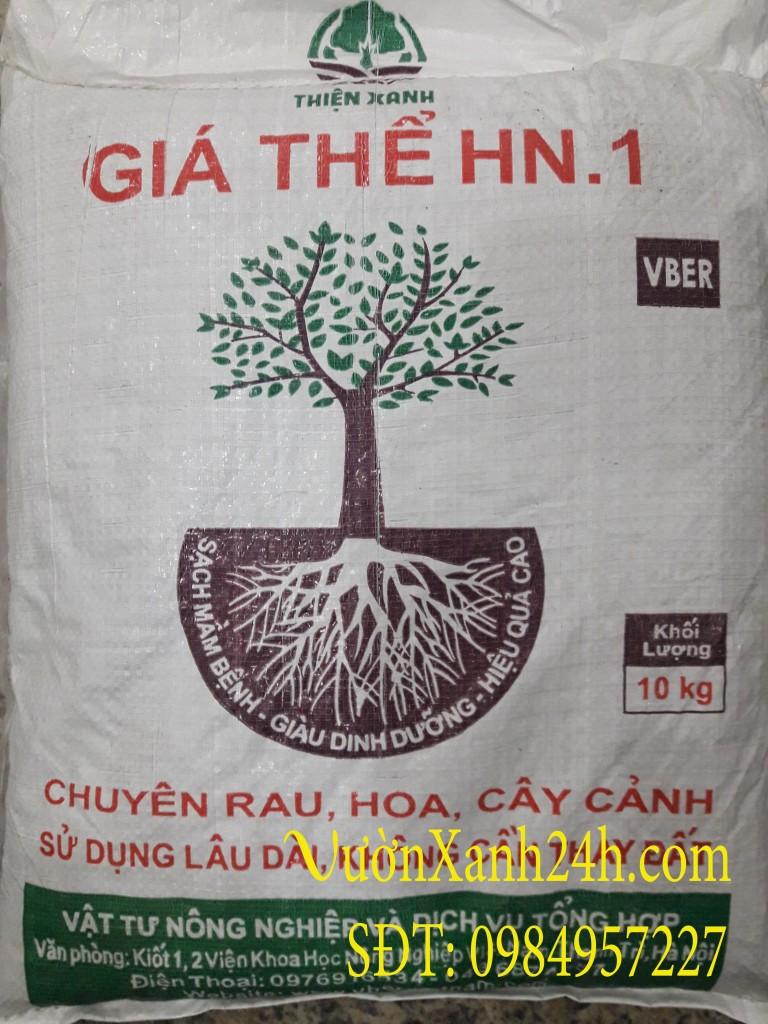 Giá thể đất hn1