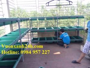 Giàn trồng rau sạch màu Xanh (3 tầng, 30 chậu)