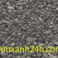 phan-de-2-min
