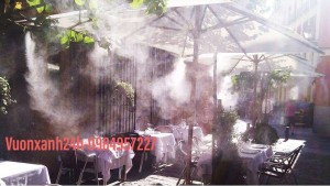 Hệ thống phun sương làm mát quán cà phê