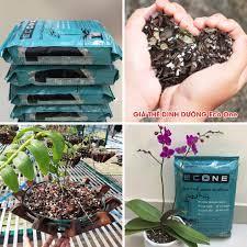 Giá thể dinh dưỡng chuyên dùng cho hoa lan Eco One