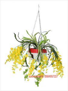 Chậu treo trồng hoa dây xích